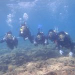 沖縄ダイビング☆8/13 青の洞窟体験ダイビング 8:00~ しおん・なすび