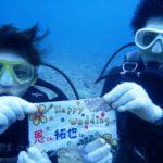 沖縄ダイビング☆ 8/15 珊瑚体験ダイビング 8時~ なすび