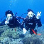 沖縄ダイビング☆8/19 サンゴ礁体験ダイビング 8時~ なすび
