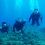沖縄ダイビング☆8/20 15時半 サンゴ礁体験ダイビング とも