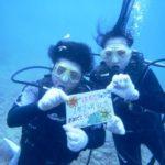 沖縄ダイビング☆8/20 13時 サンゴ礁体験ダイビング   しおん