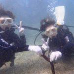 沖縄ダイビング☆8/22 サンゴ礁体験ダイビング 10:30~ なすび
