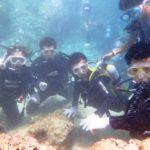 沖縄ダイビング☆8/23 サンゴ礁体験2ダイビング 12:00~ しおん・とも