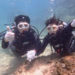 沖縄ダイビング☆8/23 サンゴ礁体験ダイビング 12:30~ なすび