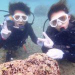 沖縄ダイビング☆8/24 サンゴ礁体験ダイビング 10:00~ しおん