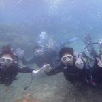 沖縄ダイビング☆8/24 サンゴ礁体験ダイビング 10:00~ なすび