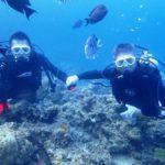 沖縄ダイビング☆8/29 青の洞窟体験ダイビング2ダイブコース 10時半 とも