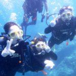 沖縄ダイビング☆8/29 青の洞窟体験ダイビング 13:00~ しおん・なすび
