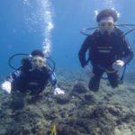 沖縄ダイビング☆9/15 青の洞窟体験ダイビング  13時〜  たく