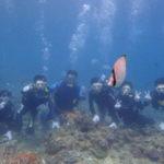 沖縄ダイビング☆9/18  青の洞窟体験ダイビング  10時半〜  なすび・りさ・りょう