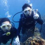 沖縄ダイビング☆9/1 青の洞窟体験ダイビング 15:00~ なすび