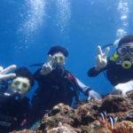 沖縄ダイビング☆9/16 青の洞窟体験ダイビング 13時~ なすび