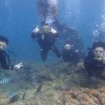 沖縄ダイビング☆9/18  青の洞窟体験ダイビング  15時半〜  なすび・りさ・りょう・しおん