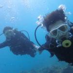 沖縄ダイビング☆9/12 サンゴ礁体験ダイビング 13時~ なすび
