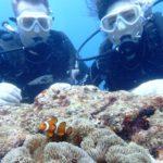 沖縄ダイビング☆9/3 サンゴ礁体験ダイビング 13:00~ えりな