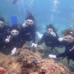 沖縄ダイビング☆9/4 サンゴ礁体験ダイビング13:00~ たく・なすび