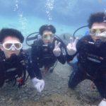 沖縄ダイビング☆9/4 サンゴ礁体験ダイビング15:00~ なすび