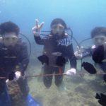 沖縄ダイビング☆9/7 サンゴ礁体験ダイビング+FUN タク