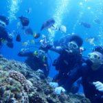沖縄ダイビング☆9/7 青の洞窟体験ダイビング 8時~ タク・しおん
