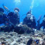 沖縄ダイビング☆9/8 10時〜 青の洞窟体験ダイビング  なすび・新城