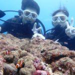 沖縄ダイビング☆9/9 サンゴ礁体験ダイビング 13時~ しおん