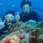 沖縄ダイビング☆9/14 サンゴ礁体験ダイビング 8時~ たく
