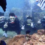 沖縄ダイビング☆9/23 サンゴ礁体験ダイビング 10時~ なすび