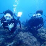 沖縄ダイビング☆9/25  サンゴ礁体験ダイビング  9時~  とも