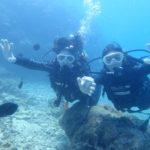 沖縄ダイビング☆10/8 サンゴ礁体験ダイビング 10時半~ しおん