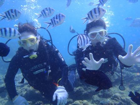 沖縄ダイビング☆10/20 サンゴ礁体験ダイビング 13時~ 新庄