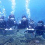 沖縄ダイビング★11/2 8時 サンゴ礁体験ダイビング   たく・しおん