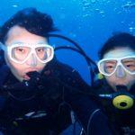 沖縄ダイビング☆11/3 8時~ 贅沢2DIVE サンゴ礁体験ダイビング しおん