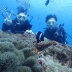 沖縄ダイビング☆11/4  珊瑚礁体験ダイビング 13:00~ どら