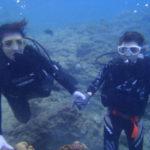 沖縄ダイビング☆11/4  珊瑚礁体験ダイビング 13:00~ りさ