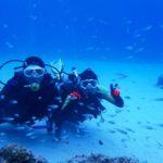 沖縄ダイビング☆11/5  慶良間ボートFUN+体験体験ダイビング なすび