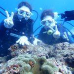 沖縄ダイビング☆11/6 8時 サンゴ礁体験ダイビング しおん