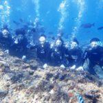 沖縄ダイビング☆11/8 10時 青の洞窟体験ダイビング  しおん・とも・たく