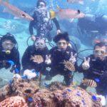 沖縄ダイビング☆11/10    珊瑚礁体験ダイビング    10:30〜    しおん、たく