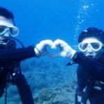沖縄ダイビング☆11/11  沖縄ダイビング☆11/11  珊瑚礁体験ダイビング 15:00~ しおん
