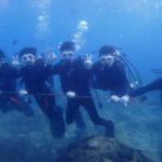 沖縄ダイビング 11/14 サンゴ礁体験ダイビング 13:00 しおん・なすび