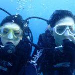 沖縄ダイビング 11/14 サンゴ礁体験ダイビング 15:00 なすび