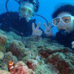 沖縄ダイビング☆11/24 8時 サンゴ礁体験ダイビング  たく