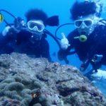沖縄ダイビング☆11/24 10時半 サンゴ礁体験ダイビング  しおん