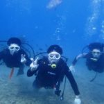 沖縄ダイビング☆ 11/24 サンゴ体験ダイビング 13:00~ しおん