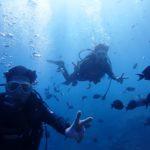 沖縄ダイビング☆11/27 青の洞窟体験ダイビング 10時~ なすび