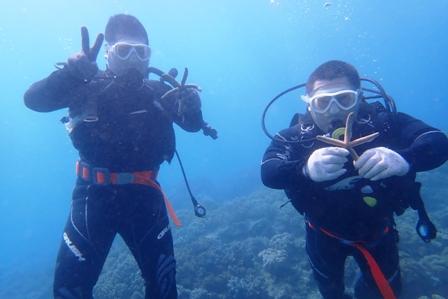 沖縄ダイビング☆12/14 サンゴ礁体験ダイビング 9時~ しおん