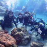 沖縄ダイビング☆12/31  サンゴ礁体験ダイビング 9:00~ しおん・りさ