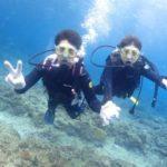 沖縄ダイビング☆1/19 サンゴ礁体験ダイビング 11:30~ ドラ