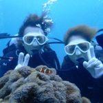 沖縄ダイビング☆1/1    珊瑚礁体験ダイビング    14:00〜    しおん