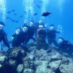 沖縄ダイビング☆1/29 サンゴ礁体験ダイビング 9時~ しおん・なすび・とも